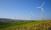 How 'green energy' is 'evergreen pain'!