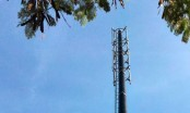 Edocto pioneers carbon fiber mobile tower in Bangladesh