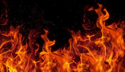 Fire breaks out at Bon Bhaban in Mohakhali