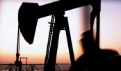 Oil rallies as Opec agrees output cut
