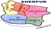 Elephant found dead in Sherpur