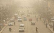 Air pollution to blame for traffic accidents: Study
