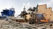 Ship-breaking Platform demands European ship recycling license