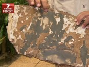 Wing part found in Mauritius from Malaysia Airlines Flight MH370