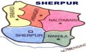 Man killed in elephant attack in Sherpur