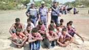 13 fishermen jailed, 2 fined for catching hilsa