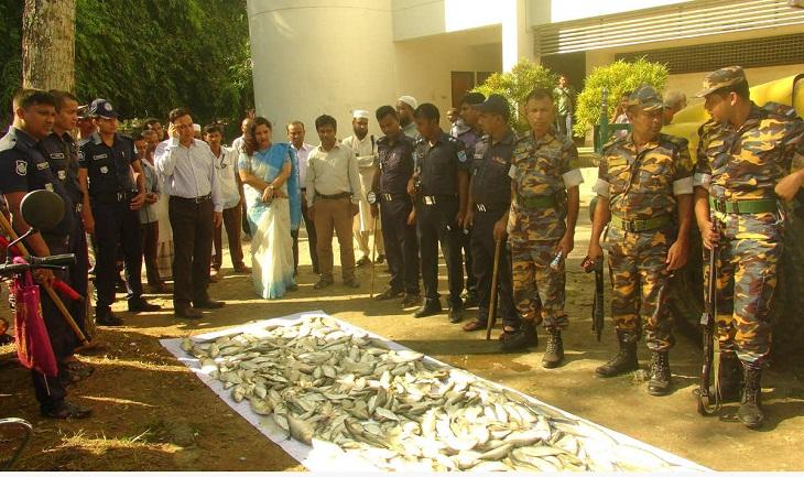 11 fishermen jailed for catching hilsa in Faridpur