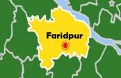 9 fishermen jailed for catching hilsha in Faridpur