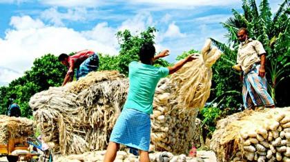 India's fresh duties will dampen Bangladeshi jute industry, trade body warns