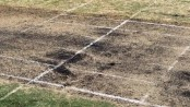 Groundsman loses length on extra-long pitch
