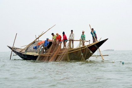 57 fishermen jailed for catching hilsa in Manikganj