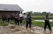 Myanmar army kills 25 in Rohingya villages