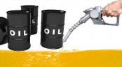 Govt to import 4.78 mn tons refined petroleum