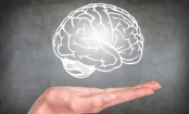 Plant Compounds May Boost Brain Power in Elderly