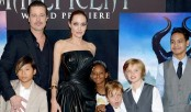 Brad Pitt 'not invited' to spend Thanksgiving with children