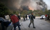 Palestinians, foreigners help Israel fight fire