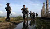Myanmar to probe abuse against Rohingya