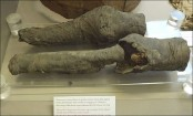 Mummified knees discovered most likely belong to Egypt's Queen Nefertari
