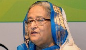 Hasina stresses enduring commitment to Human Rights
