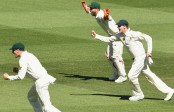 Australia defeat Pakistan in dramatic finish to win Test series