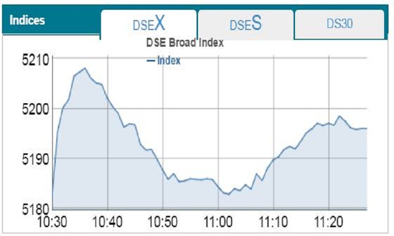 Both DSE, CSE up at opening