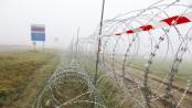 Refugee fences threaten wildlife in Europe
