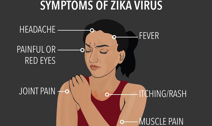 Zika may get pandemic in Vietnam in 2017: health official