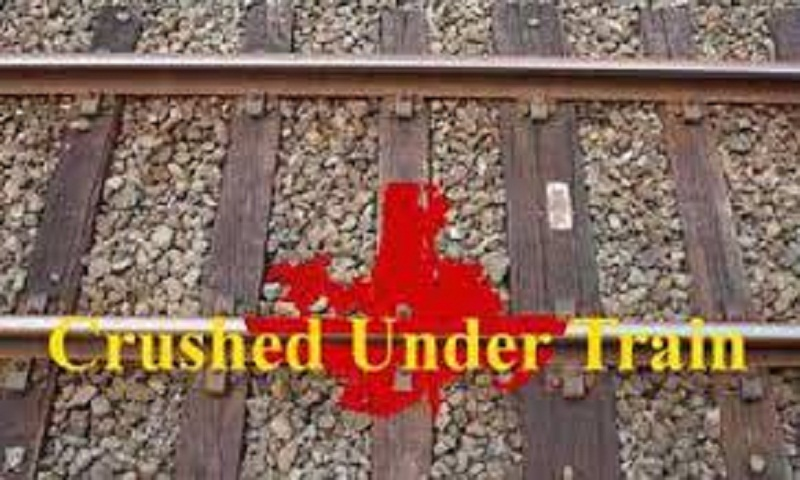 Elderly man crushed under train in Moghbazar