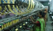 Call to revitalize silk sector to bolster country's economy