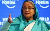 Prime minister Hasina seeks International community's greater focus on food security