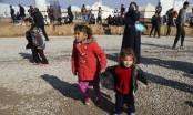 750,000 still living under militant rule in Iraq's Mosul: UN
