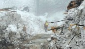 Death toll in Italy avalanche hits 15