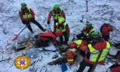 Italy avalanche: 3 puppies found alive under hotel rubble