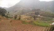 Myanmar authorities to confiscate unused farmland