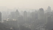 The surprising link between air pollution and Alzheimer's disease