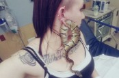 US teen's pet snake gets stuck in her earlobe (Video)