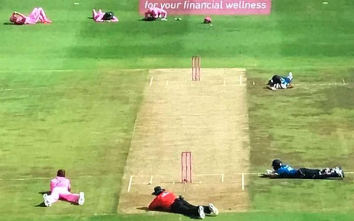 Swarm of bees stop South Africa-Sri Lanka ODI at Wanderers (Video)