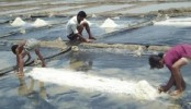 Government to protect salt farmers' interest: Tofail