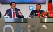 Oil market 'responding positively' to output cut: OPEC president