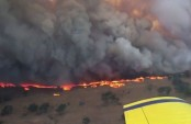 Nearly 100 bushfires raging in Australia's New South Wales state