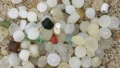 Tiny plastic pellets found on 73% of UK beaches