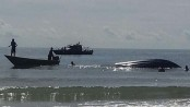10 dead as boat capsizes at southwest coast in Sri Lanka
