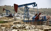 Iran finds 2 billion barrels of shale oil reserves