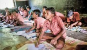 Impact Of Culture On Education