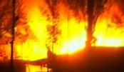 Fire gutted poultry feed mill in Natore