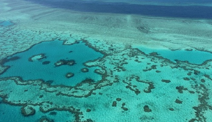 Plan to save Great Barrier Reef set back decades: experts