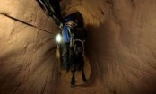 3 Palestinians dead in Gaza-Egypt smuggling tunnel