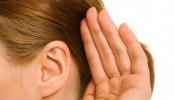 New drug combination may combat hearing loss