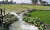 We should devise more effective irrigation system says HT Imam