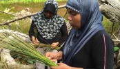 Gender equality, a game changer for nature